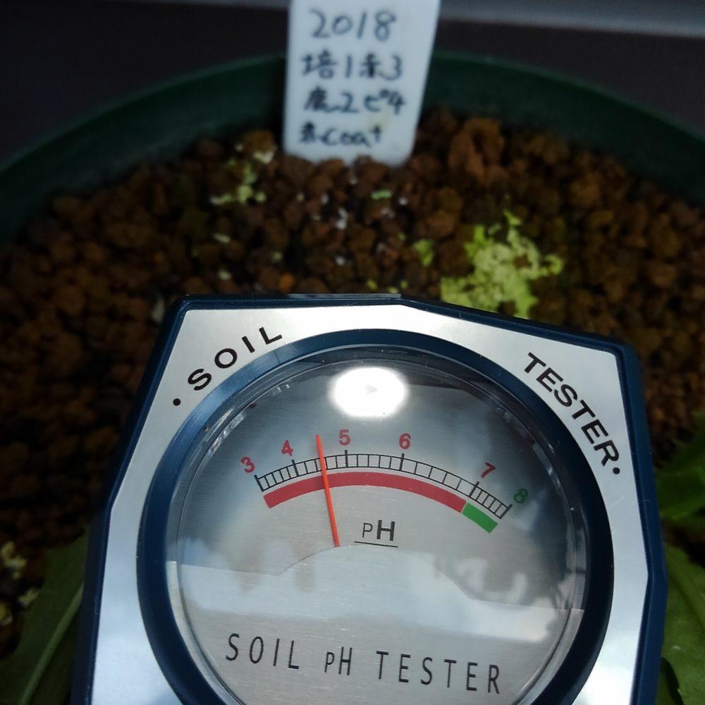 土壌 ph 測定